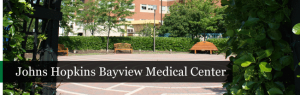 Weltchek Mallahan & Weltchek Lawyers vs Bayview Medical